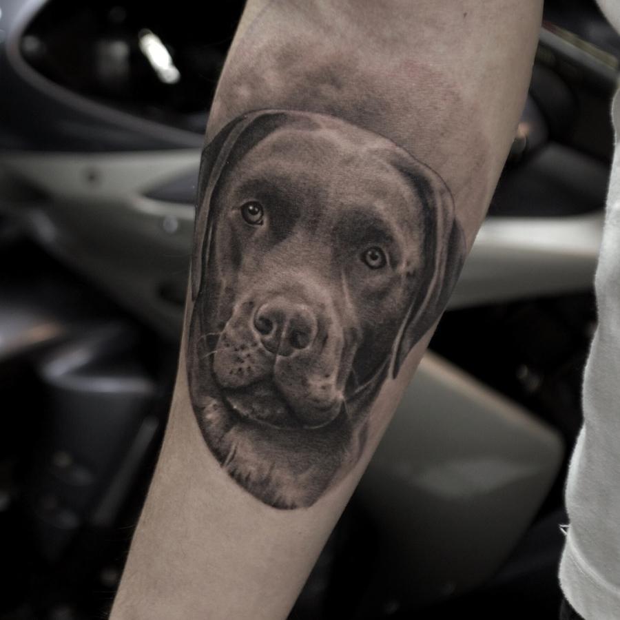 Tattoo Brust Drache